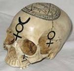 Skull with inscription 1